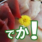 【松戸】【ランチ】お食事処 築地で海鮮三色丼を食べてきました。お値打ち1,000円!