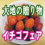 【上野】人気のバイキング「大地の贈り物」イチゴフェア【食べ放題】