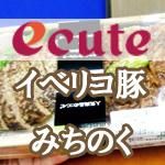 【駅弁】上野駅・エキュートの『イベリコ豚とみちのく育ちのハンバーグ弁当』を食べてみた【eashion】